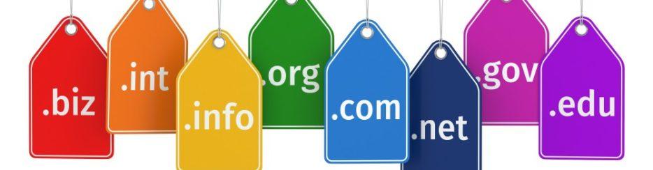 como seleccionar un dominio en internet
